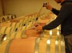 brunello_wine_tasting