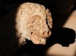 marble_lion_antimo_abbey_montalcino