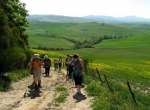 trekking_montalcino_00