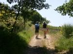 trekking_montalcino_03