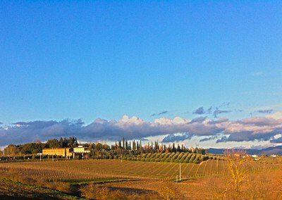 panorama_cantina