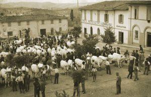 Pastificio fabbri in Strada in Chianti