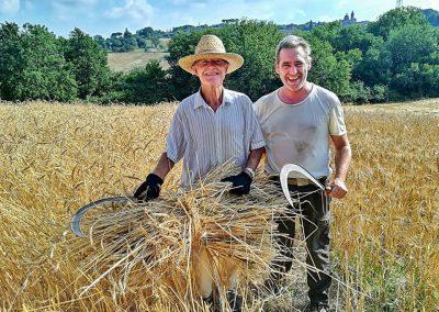 santa-vittoria-hand-harvest-web