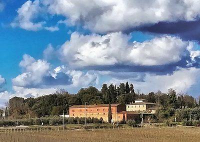 santa-vittoria-wheatfield-winery-web