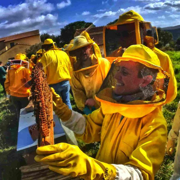 We follow a natural method for our bees